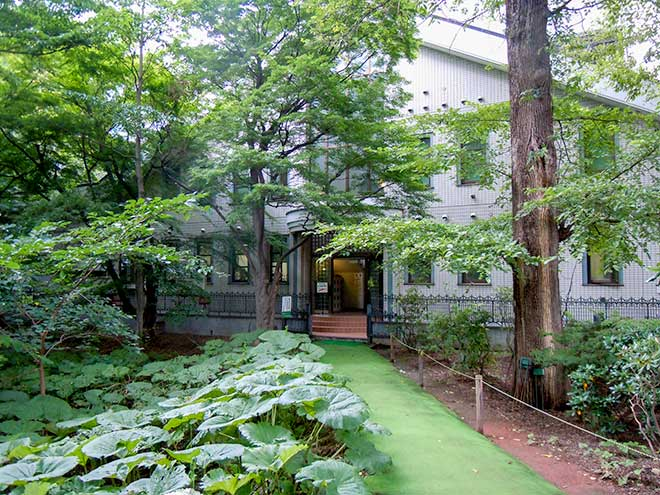 Botanic Garden, Field Science Center for Northern Biosphere, Hokkaido University