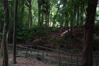 Maruyama Koen Park