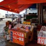 Market in Early Morning: Hakodate Asaichi(函館朝市)