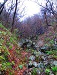 Ohta Jinjya Shrine, Not Mountain Climbing, but Ascetic Practices