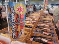 Salmon and mushroom are in season at Sapporo Central Wholesale Market