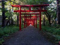 Sapporo Fushimi Inari Jinjya(札幌伏見稲荷神社)