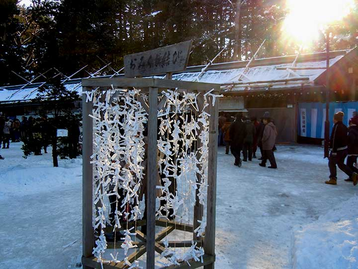 Visit to Hokkaido Jingu before Maruyama Zoo