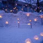 Otaru Snow Light Path 2020