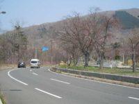 Noboribetsu Onsen Cherry-tree line(登別桜のトンネル)