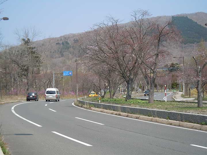 Noboribetsu Onsen Cherry-tree line