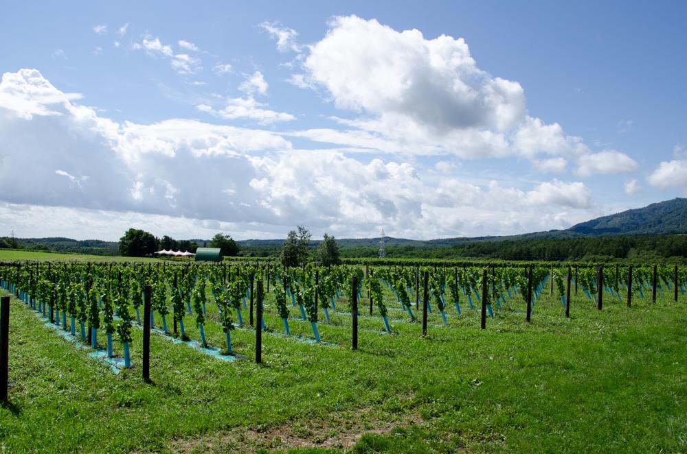 Tsurunuma Winery in Urausu