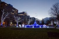 Sapporo White Illumination 2015