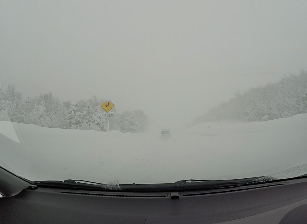 White-out Driving in the winter