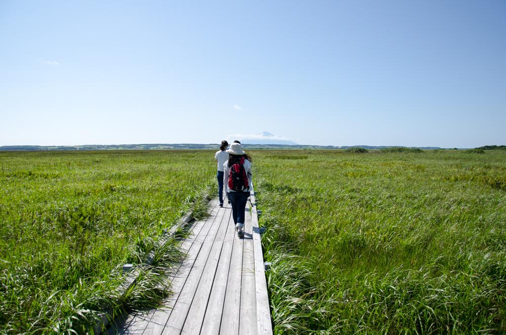 Sarobetsu Plain
