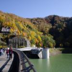 Autumn Leaves in Hoheikyo Dam 2019