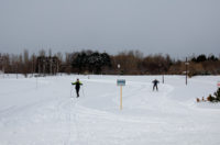 Cross Country Ski in Maeda Forest Park
