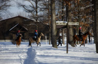 Northern Horse Park near Chitose Airport