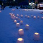 Snow Lights In Nakajima Park